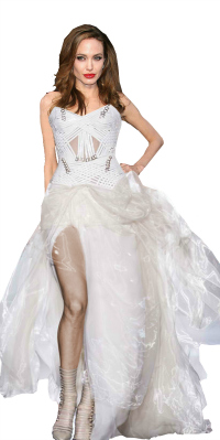 Angeline Jolie Wedding Dresses
